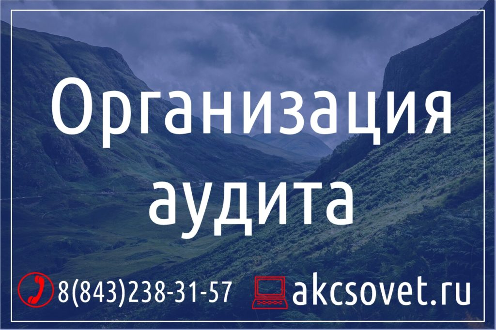 Организация аудита Казань